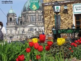 Catedral vista do Nikolaiviertel