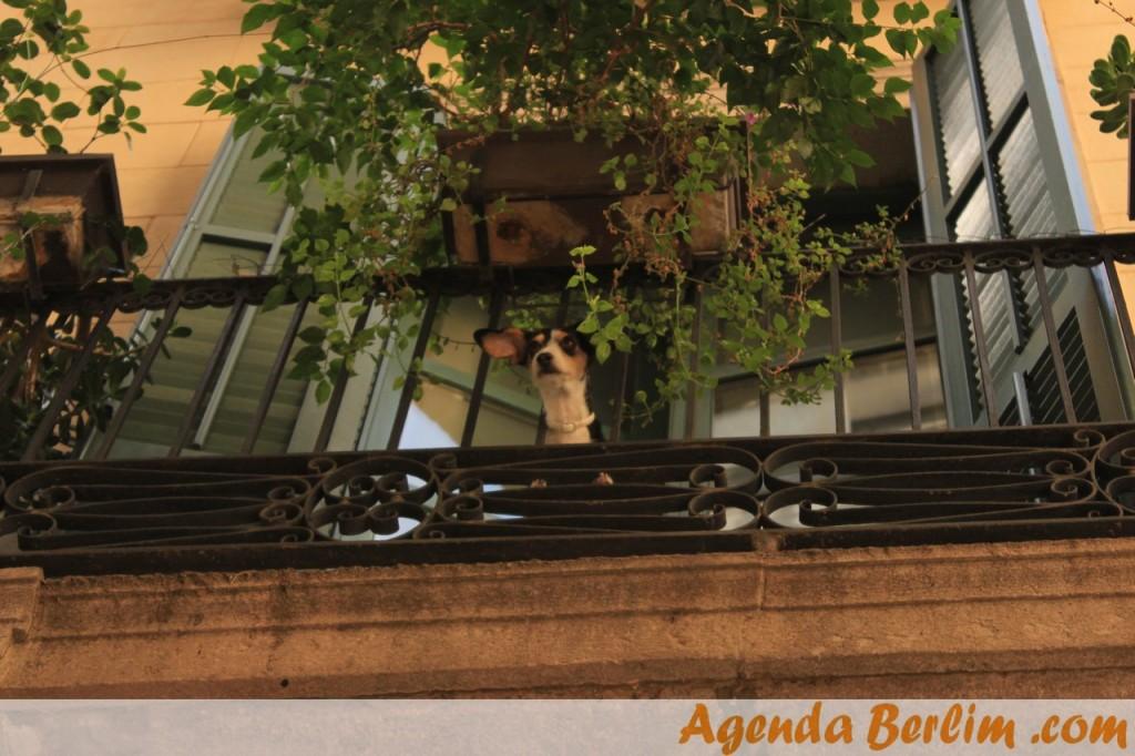 Voltamos em breve com impressões da linda Barcelona