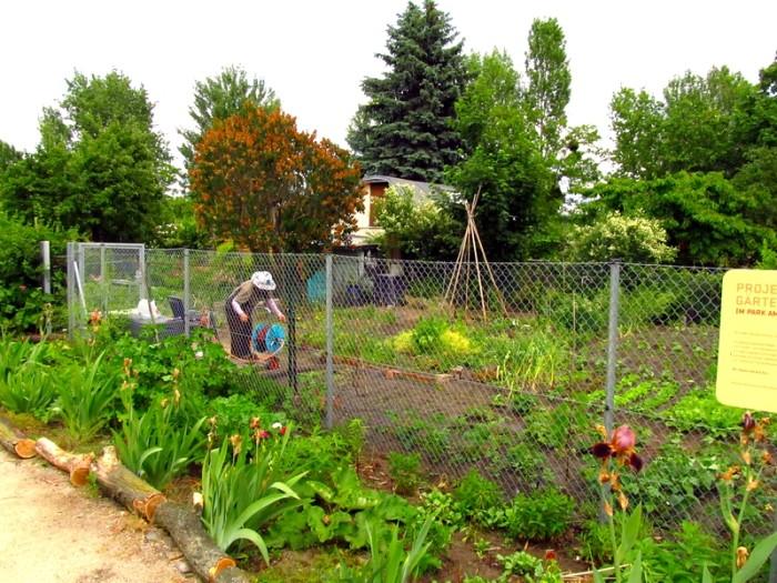 Jardinagem coletiva