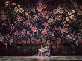 A bela adormecida: um espetáculo de balé em Berlim