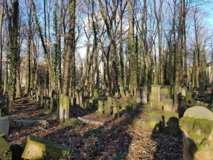 Cemitério judeu da Schönhauser Allee